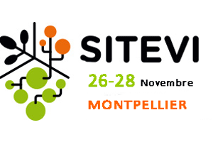 Sitevi 2019